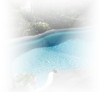 Request Pool  Permit